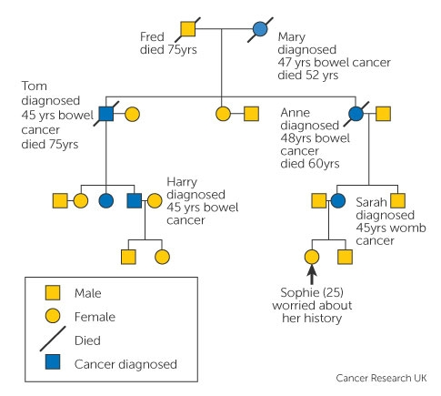 Familial cancer def. Ingrijiri paliative