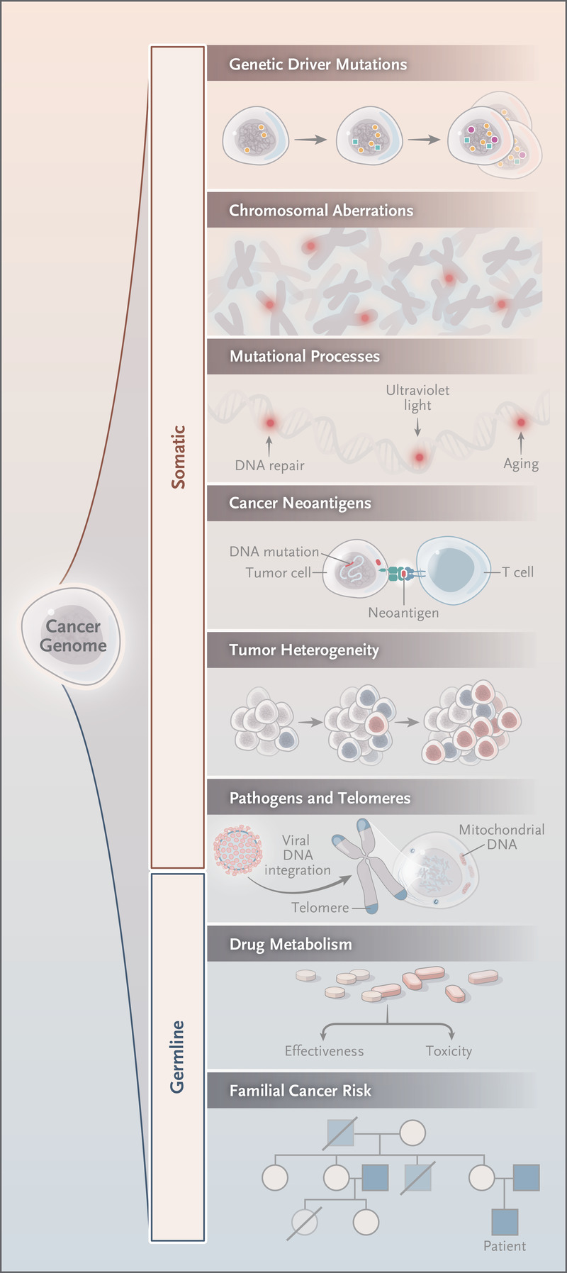 familial cancer exome sequencing