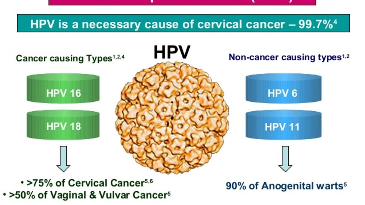 hpv and cancer link helminți la copii până la un an