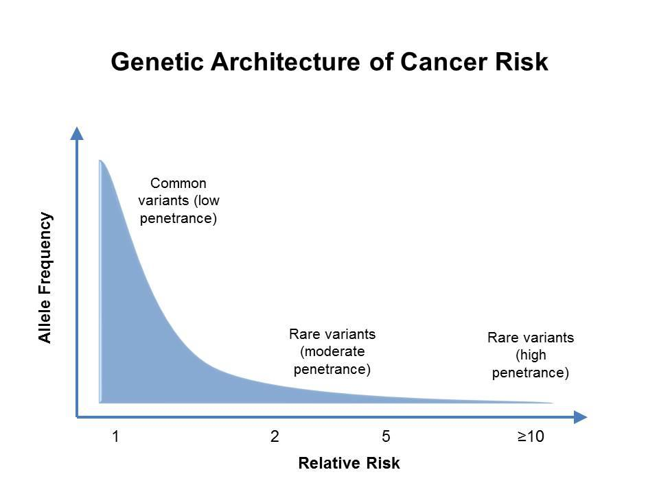 cancer genetic predisposition