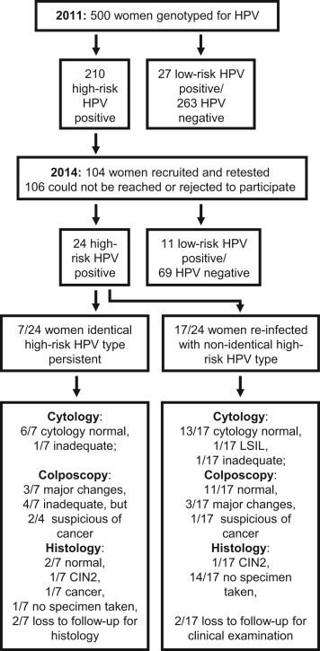 positive high risk human papillomavirus)