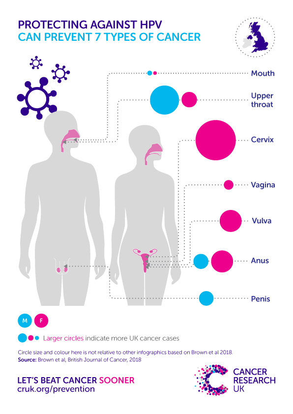 Hpv related cancer in males