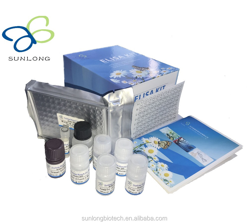 human papilloma virus kit)