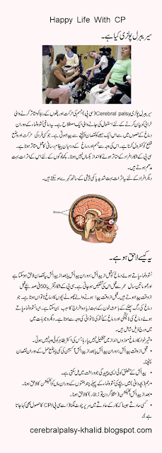 papilloma virus meaning in urdu