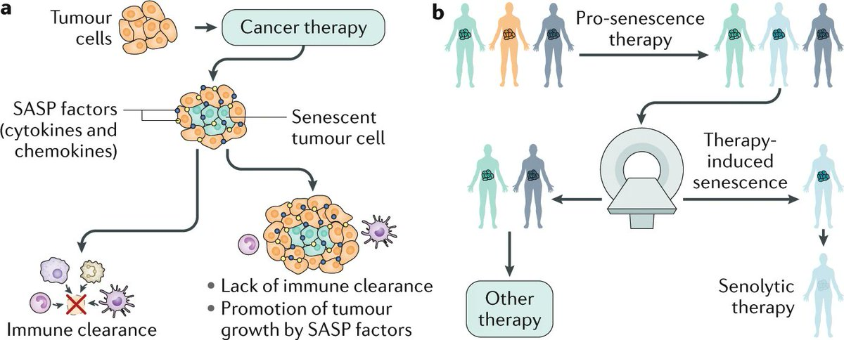 hepatic cancer nature review)