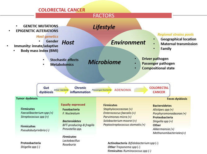 f colorectal cancer)