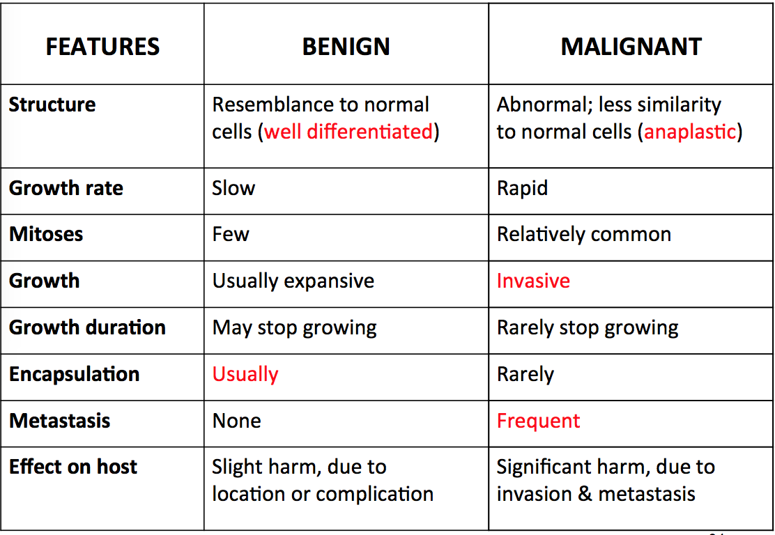 benign vs cancer