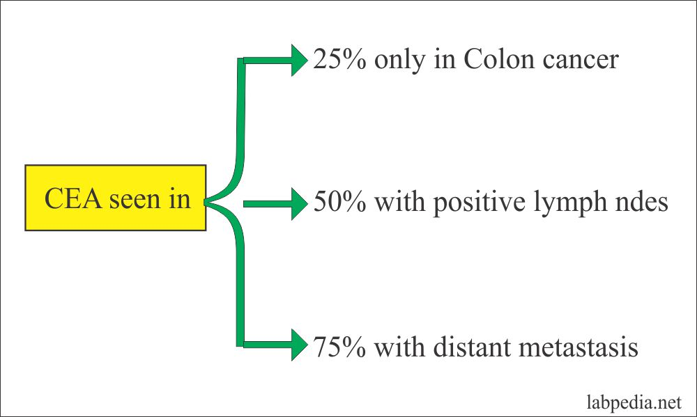 cancer colon tumor marker