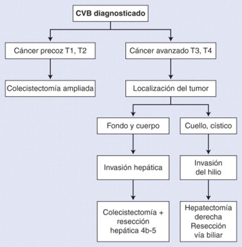 cancer vesicula biliar tratamiento hpv in mouth signs