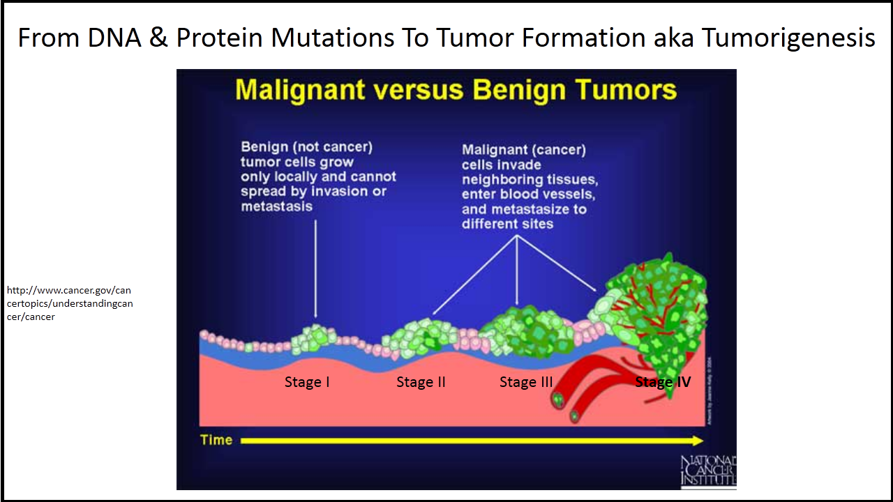 cancer vs benign tumor)