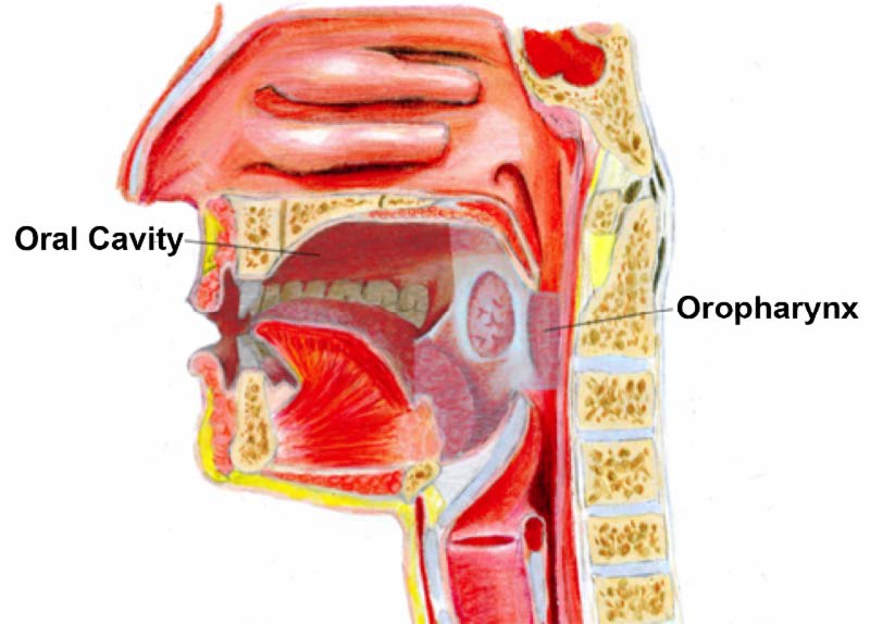 hpv oropharynx cancer