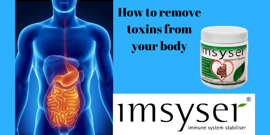 toxine in the body