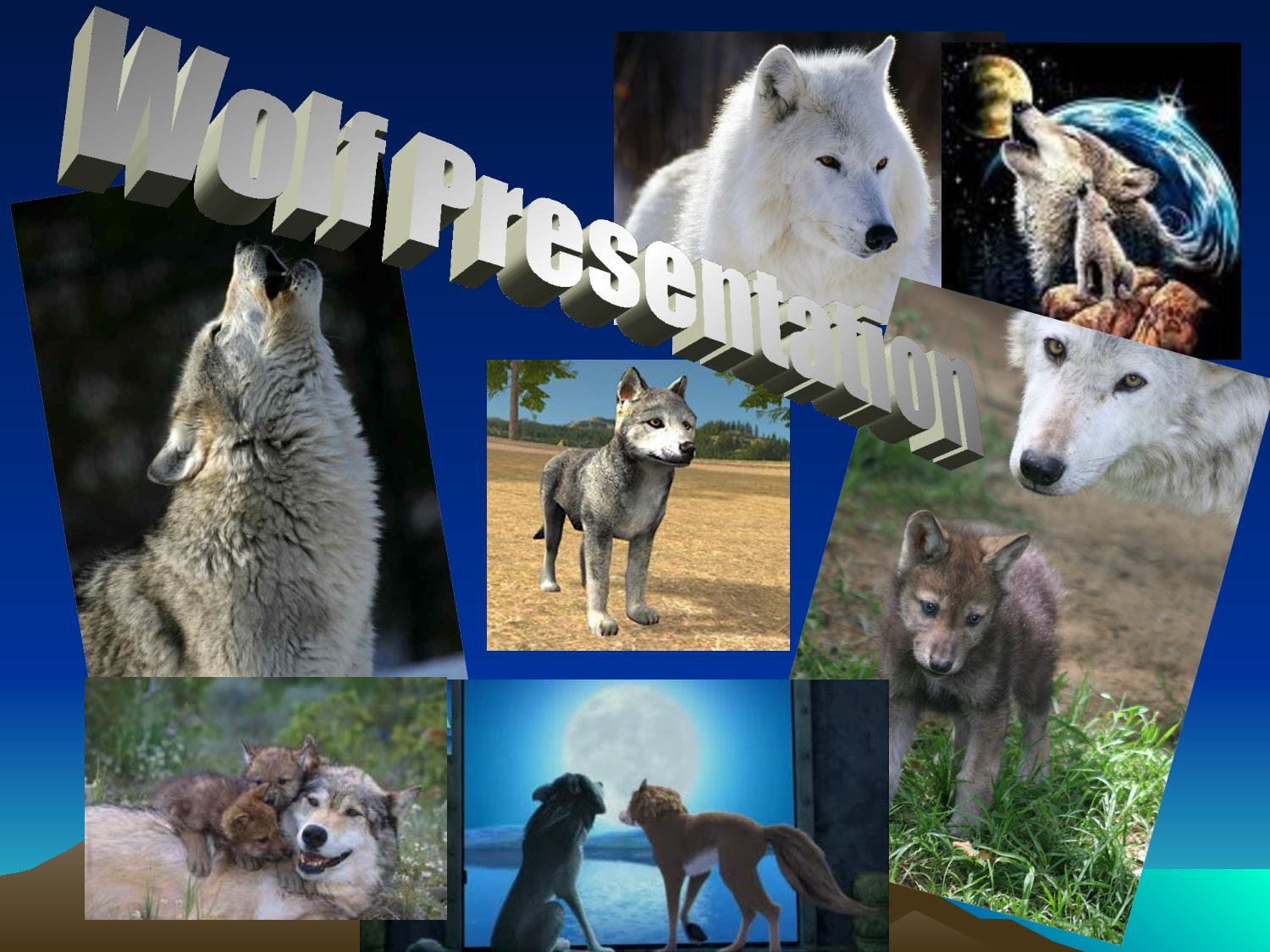 papillomatosis in wolves)