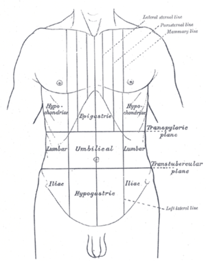 peritoneal cancer lower back pain)
