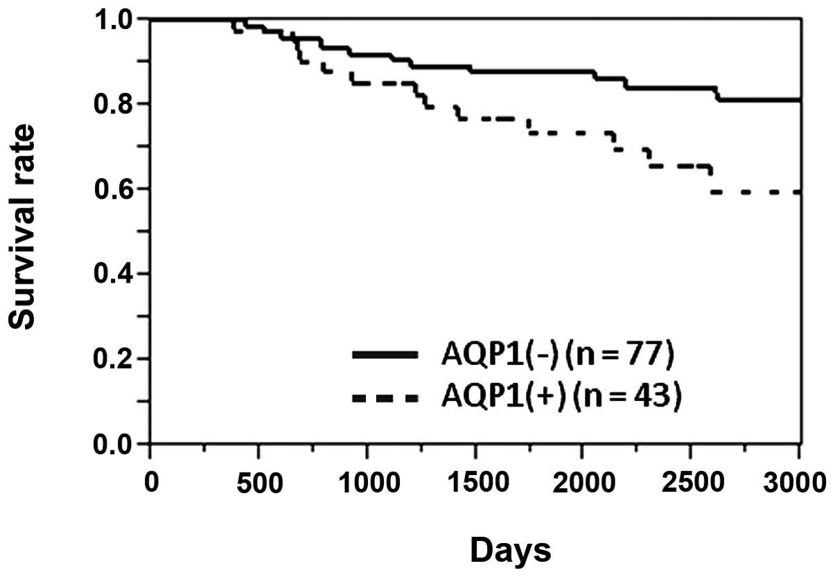 04 Artic Jc Progn Fact Rectosigmoid cancer survival rate