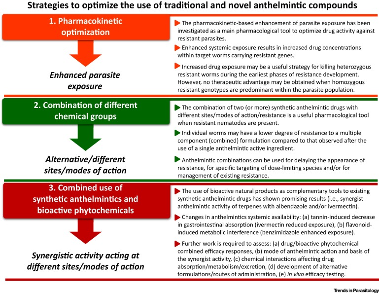 anthelmintic action