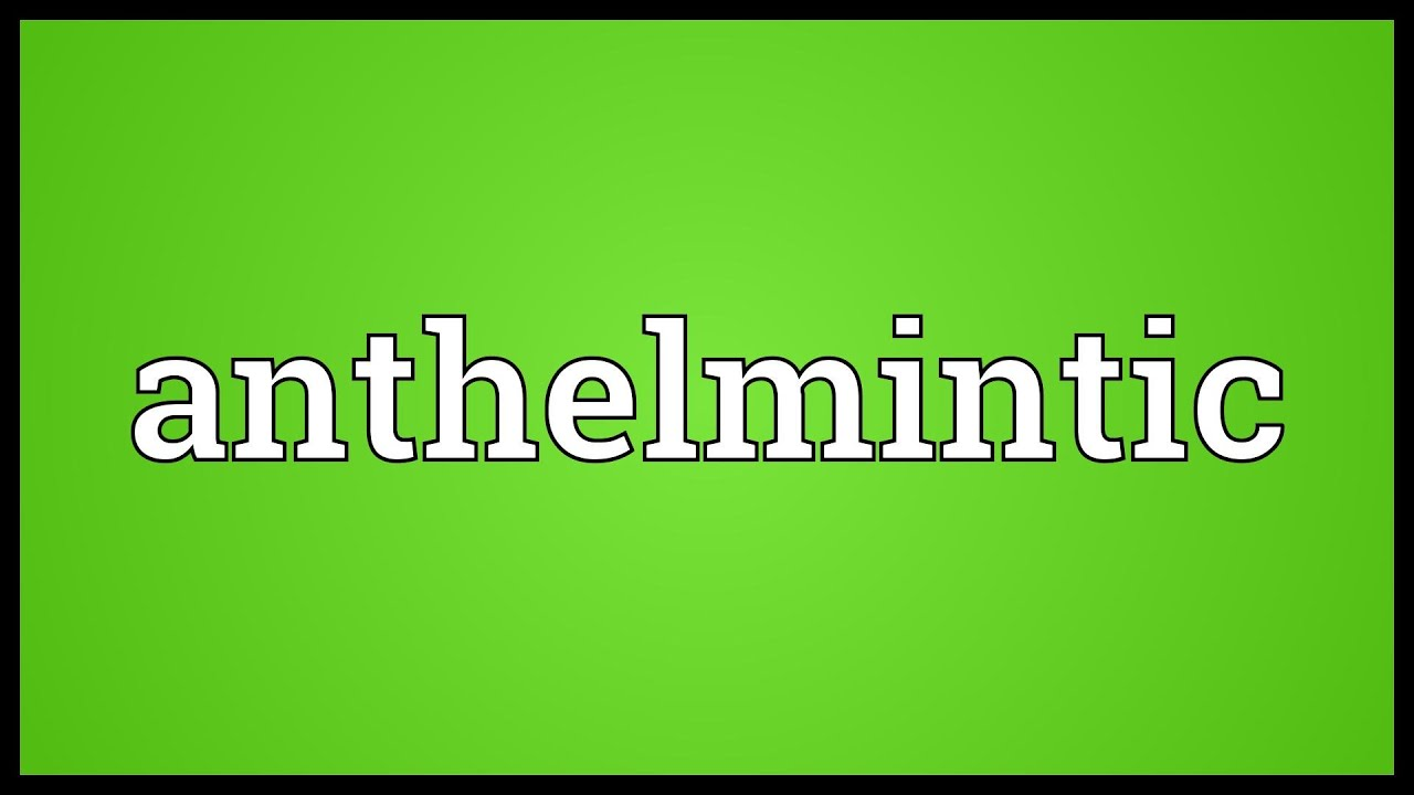 anthelmintic what is the meaning