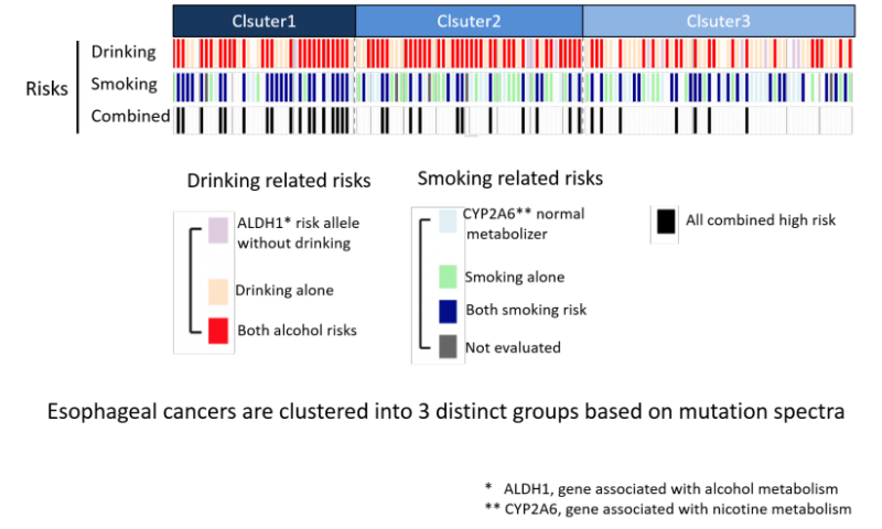 cancer genetic discovery)