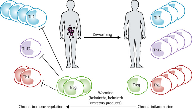 Helminth therapy cancer