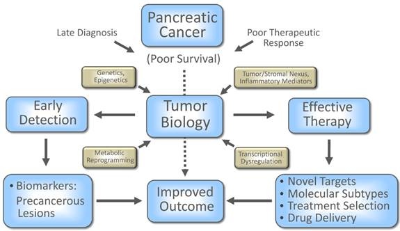 pancreatic cancer biomarkers