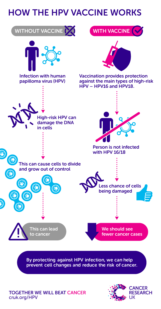 Colon cancer and hpv virus