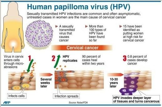 how can human papillomavirus be transmitted)