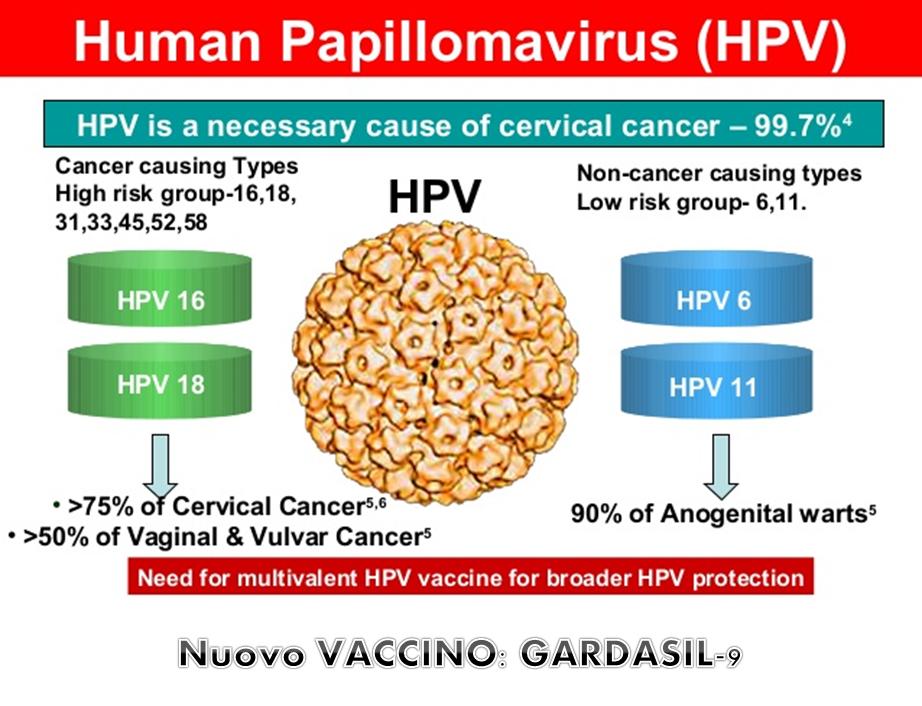 hpv virus not 16 or 18 dysbiosis depression
