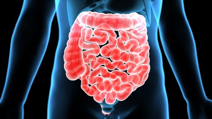 7 remedii naturale contra parazitilor intestinali